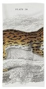 The Naturalist Library Beach Towel