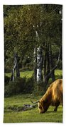 the New forest creatures Beach Towel