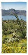 The Ocotillo View Beach Towel