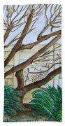 The Old Apricot Tree Beach Towel