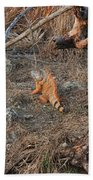 The Orange Iguana Beach Towel