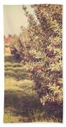 The Orchard Beach Towel by Lisa Russo