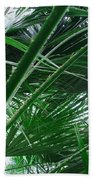 The Palm House Kew England Beach Towel