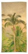 The Palms Beach Sheet