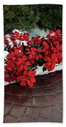 The Path To Christmas - Poinsettias, Trees, Snow, And Walkway Beach Towel