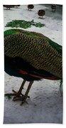 The Peacock In The Royal Garden In Winter Beach Towel
