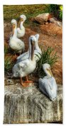 The Pelican Clan Beach Towel