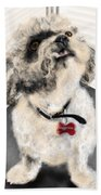 The Pooch With The Crooked Tooth Beach Towel