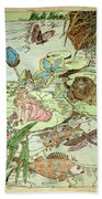 The Princess And The Frogs Beach Sheet