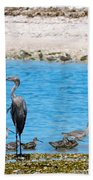 The Procession  Beach Towel