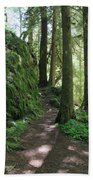 The Quiet Forest Beach Towel