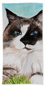 The Ragdoll Beach Towel