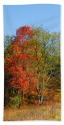 The Reds And Greens Of Autumn Beach Towel