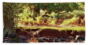 The River Lin , Bradgate Park Beach Towel