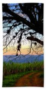 The Road Less Traveled Beach Towel by Skip Hunt