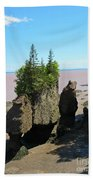 The Rocks At Hopewell Cape Beach Towel