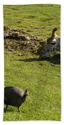 the Safari park Beach Towel