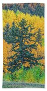 The Sanctity Of Nature Reified Through A Photographic Image  Beach Towel