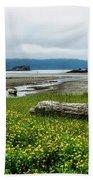 The Shoreline Beach Sheet