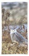 The Snowy Owl Beach Towel