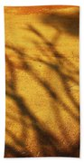 The Soundlessness Of Nature Beach Towel