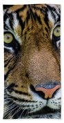 The Stare Beach Towel