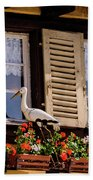 The Stork Has A Delivery - Colmar France Beach Towel