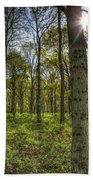 The Sun Touched Forest Beach Towel