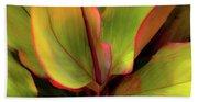 The Ti Leaf Plant In Hawaii Beach Towel