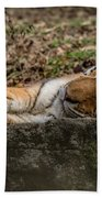 The Tiger's Rock  Beach Towel