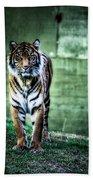 The Tigress Beach Towel
