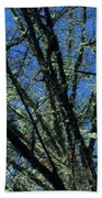 The Top A Glowing Tree Beach Towel