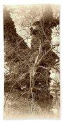 The Tree - Sepia Beach Towel