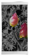 The Two Of Us Beach Towel