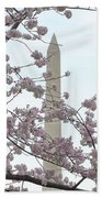 The Washington Monument At The Cherry Blossom Festival Beach Towel