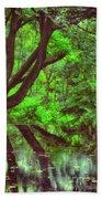 The Water Margins - Nutclough Woods Beach Towel