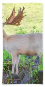 The White Stag 3 Beach Towel