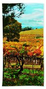 The Winemakers Residence Beach Towel