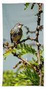 The  Yellow-rumped Warbler Beach Towel