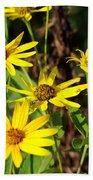 Thin-leaved Sunflower Beach Towel