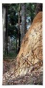 This Mound Has Termites Beach Towel
