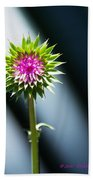 Thistle Bloom Beach Towel