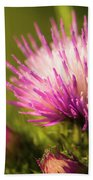 Thistle Flowers Beach Towel