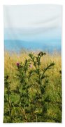 Thistle On The Blue Ridge Beach Towel