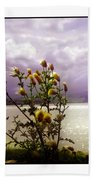 Thistledown Time Beach Towel