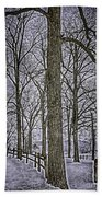 Thompson Lake Hdr  Beach Towel