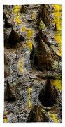 Thorns Of Silk Beach Towel