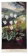 Thornton: Cyclamen Beach Towel