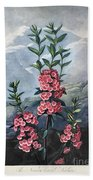 Thornton: Kalmia Beach Towel