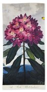 Thornton: Rhododendron Beach Towel